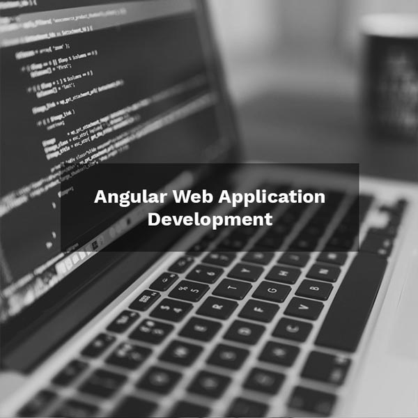 Angular Web Application Development