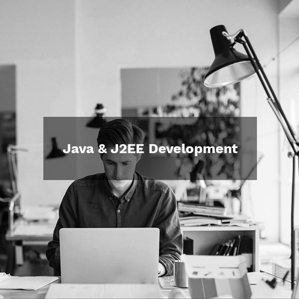 Java & J2EE Development