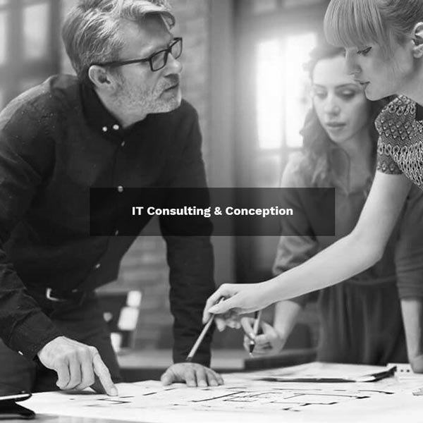 IT Consulting & Conception
